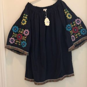 Plus size Boho embroidered shift dress 2X